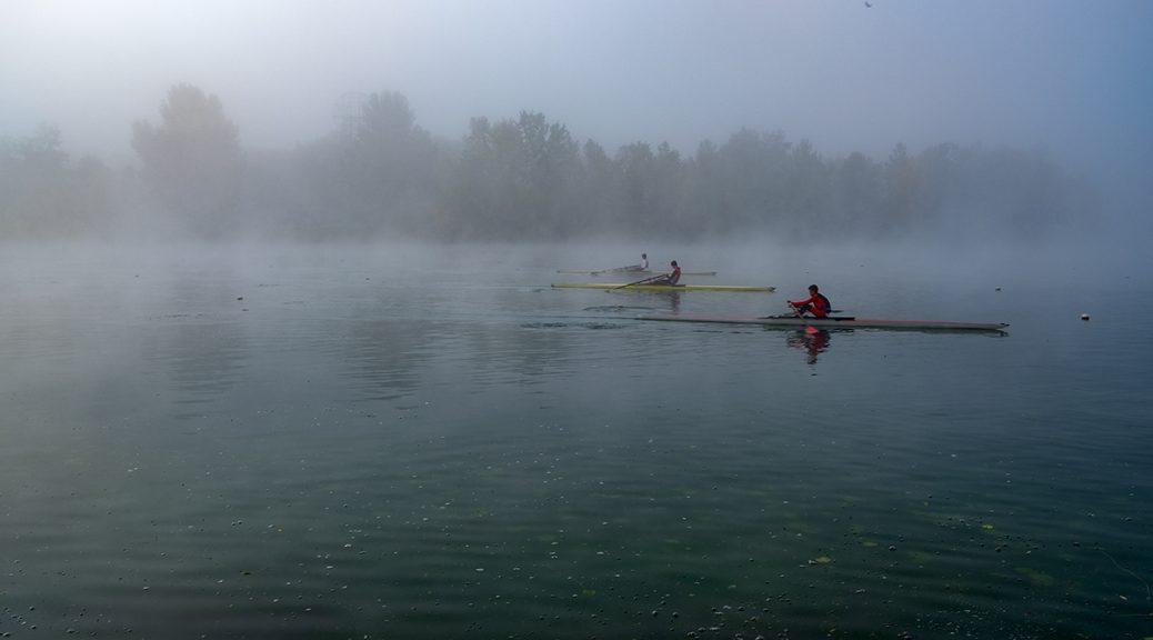 Veslači u magli