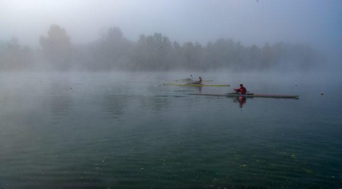 Rowers in fog